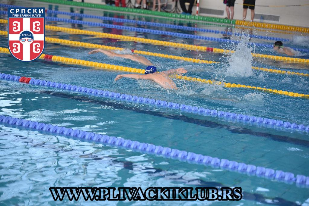 delfin plivanje